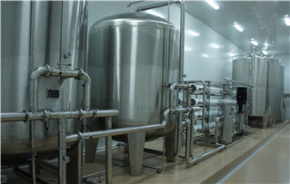 4T医药不锈钢纯水设设备